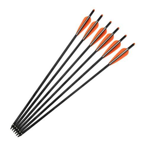 12x Screw Tips Archery Hunting New